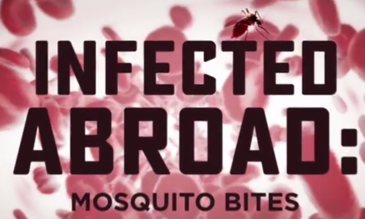 Infected Abroad: Mosquito Bites